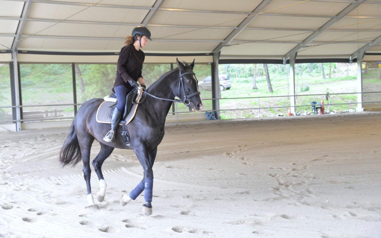 maneggio coperto cavalli