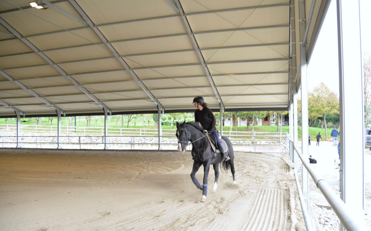 maneggio coperto cavalli e cavalieri