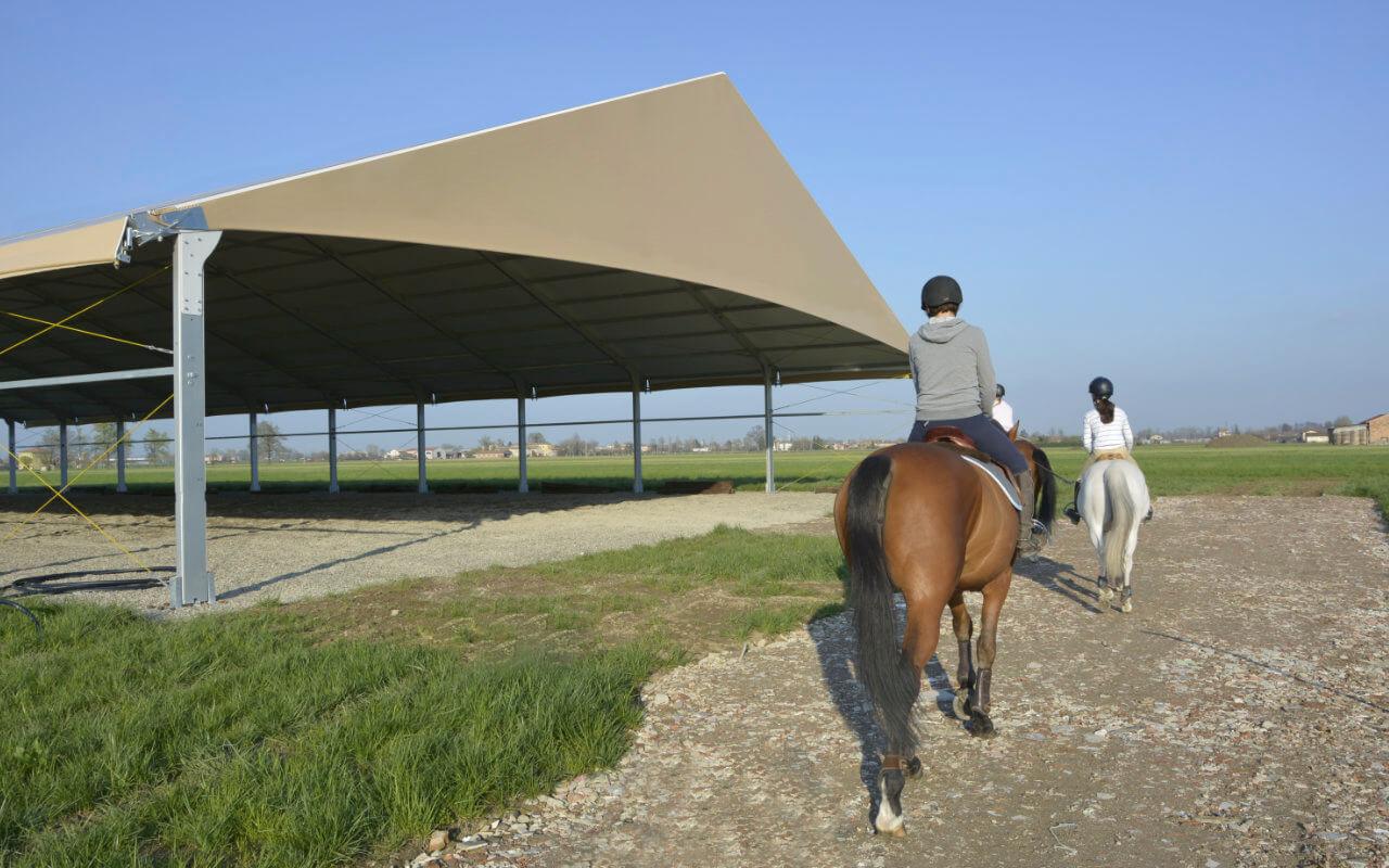 maneggio coperto per equitazione
