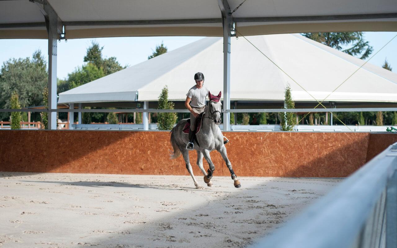 maneggio coperto per cavalli
